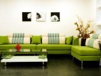 Салатовая гостиная — 50 фото идеального сочетания в интерьтере