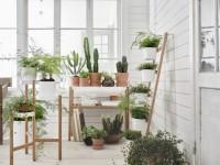 Подставка для цветов в интерьере — 60 фото идей от дизайнеров