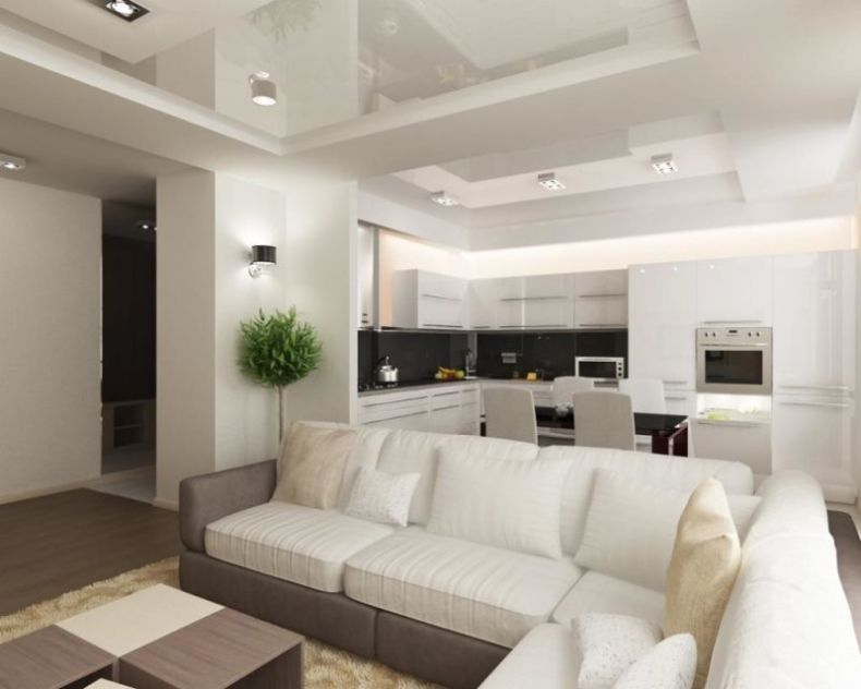stunning-kitchen-living-room-interior-design-with-white-sofa-feat-table-on-beige-furry-rug-including-plants-corner-beside-kitchen-also-lighting-ceiling
