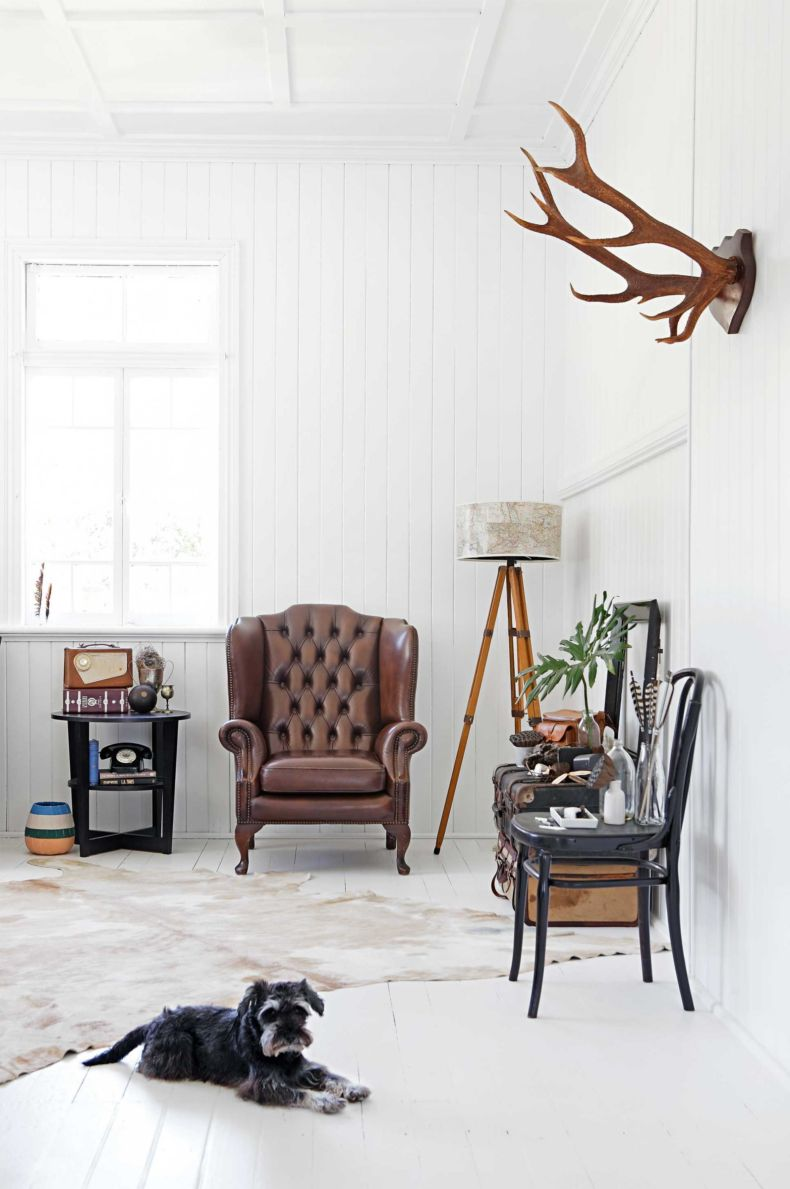 white-living-room-dog-vintage-furniture-jan15-20150320095524-q75-dx1920y-u1r1g0-c