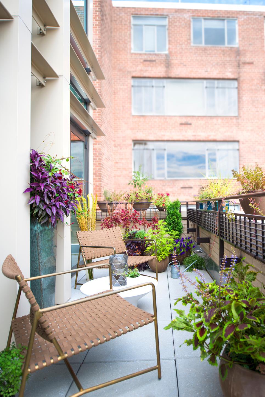 ffod_amy-elbaum_dc-condo-balcony-jpg-rend-hgtvcom-966-1449