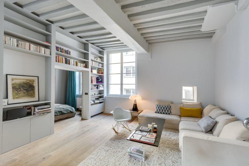 apartment-in-paris-by-tatiana-nicol-1
