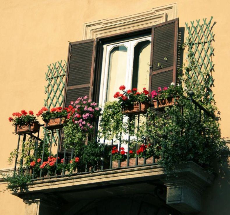 balkoni-s-cvetami