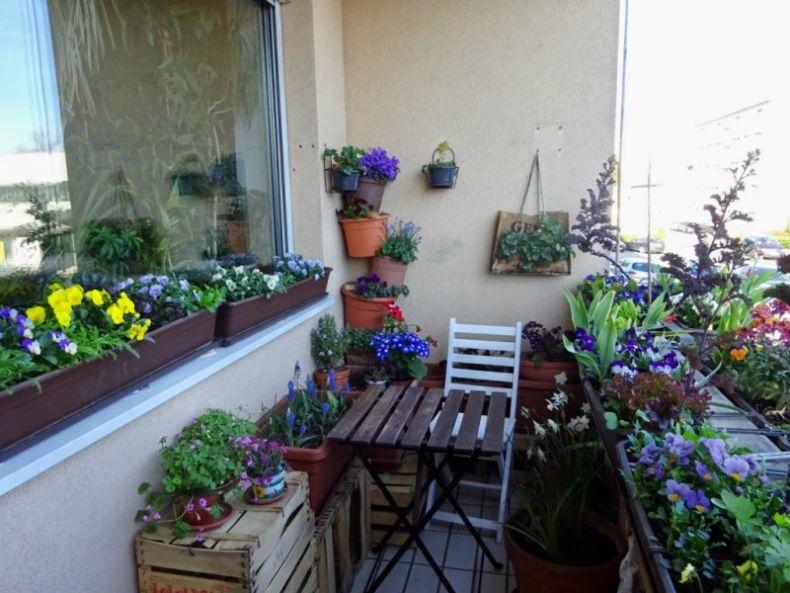 mini-sad-na-malenkom-balkone-1024x768