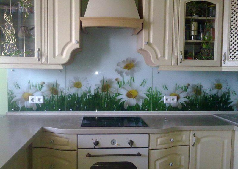 Фартук на кухне (3)