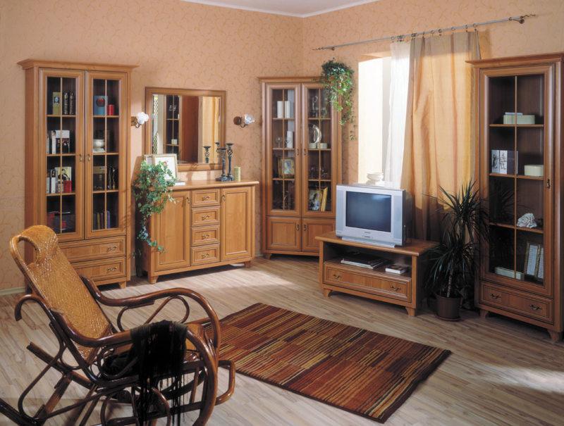 Корпусная мебель для гостиной (14)