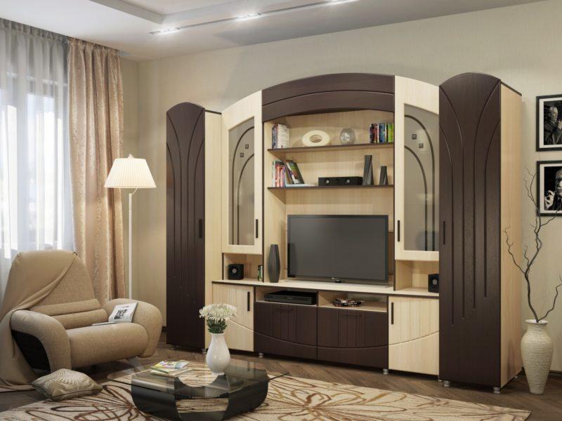 Корпусная мебель для гостиной (18)
