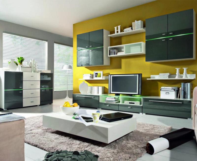 Корпусная мебель для гостиной (25)