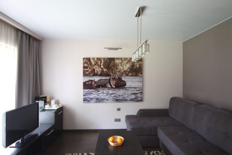 Living room 16 m2 (25)