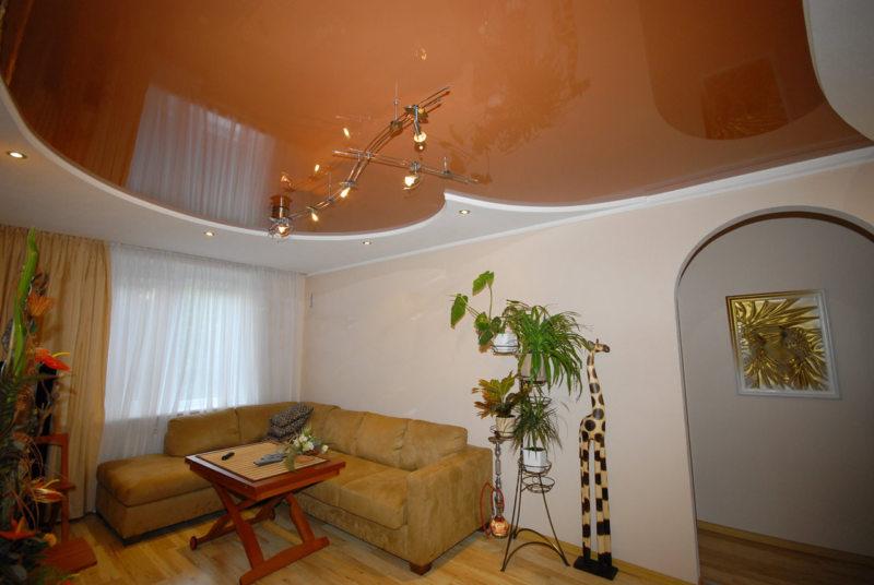 Натяжные потолки в гостиной (14)
