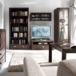 Office furniture for the living room (22)