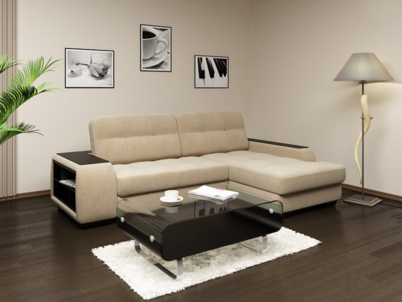 Sofas in the living room (18)