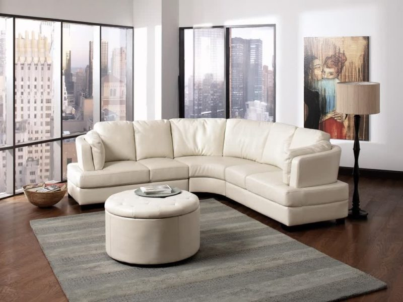 Sofas in the living room (21)