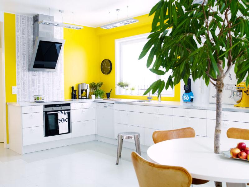 Стены на кухне (02)