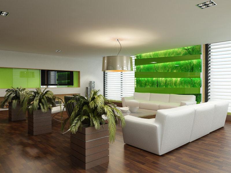 Зеленая гостиная (14)
