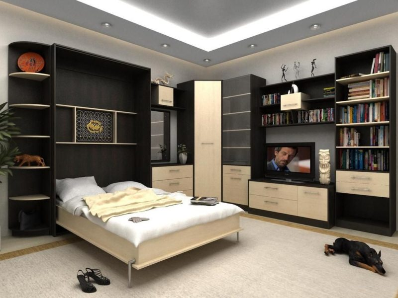Кровать встроенная в шкаф (68)