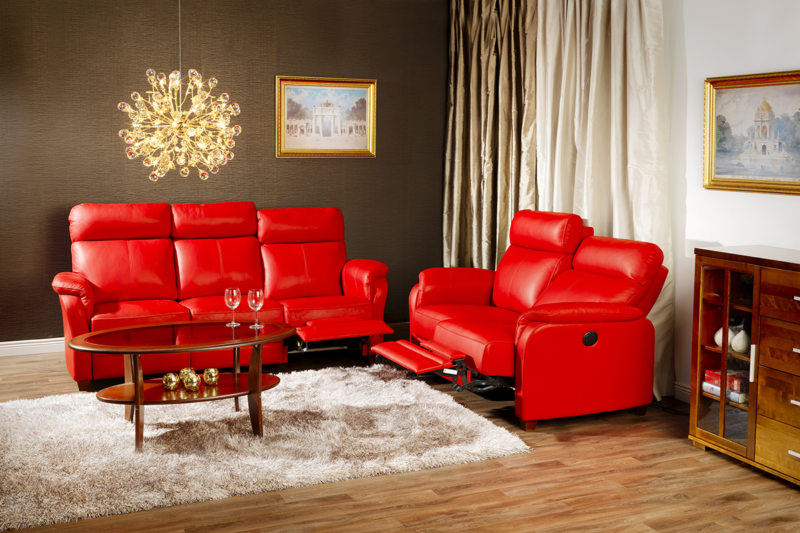 Leather seating living room (33)