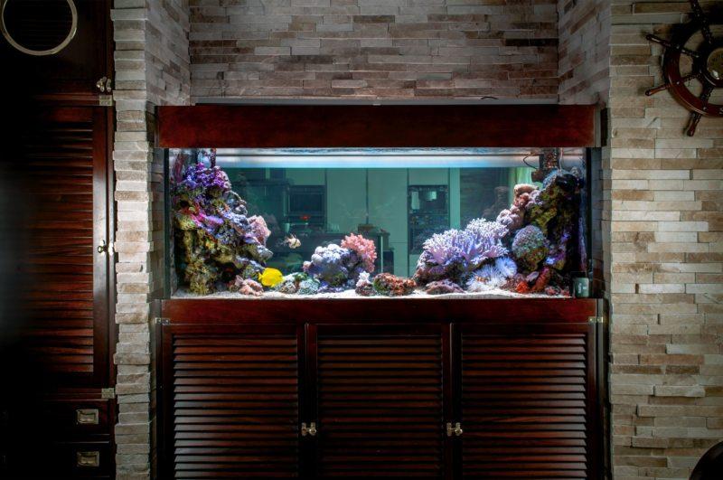 Оформление аквариума (13)