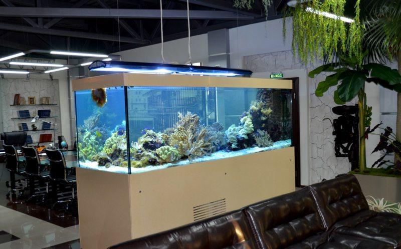 Оформление аквариума (14)