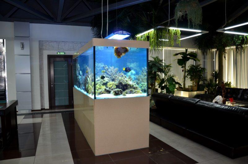 Оформление аквариума (16)