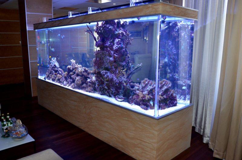 Оформление аквариума (17)