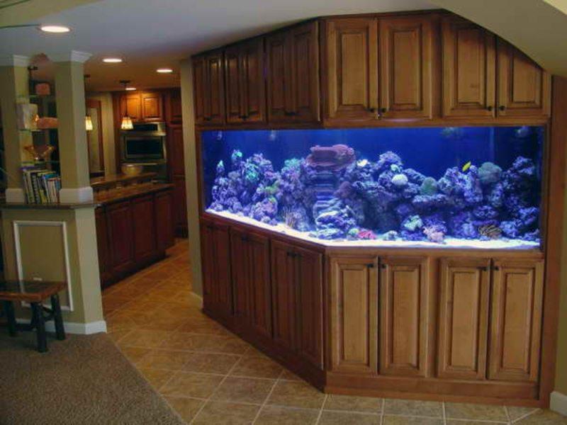 Оформление аквариума (19)