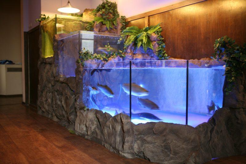 Оформление аквариума (21)