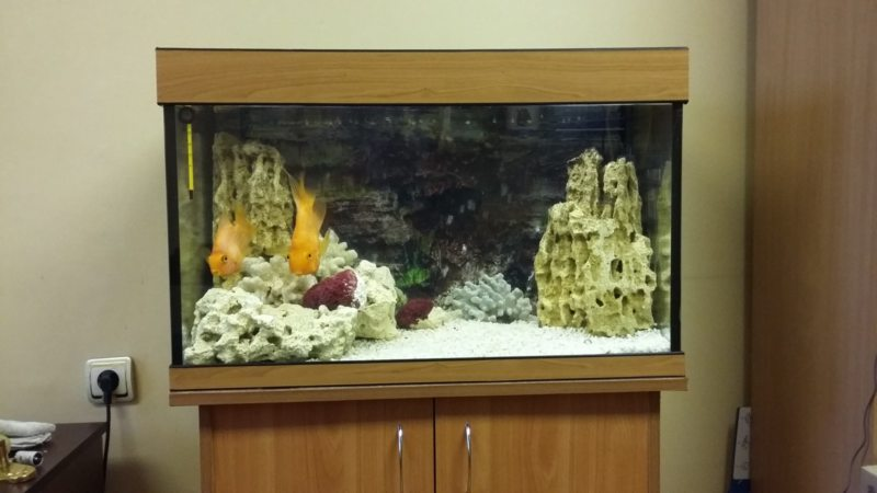 Оформление аквариума (3)