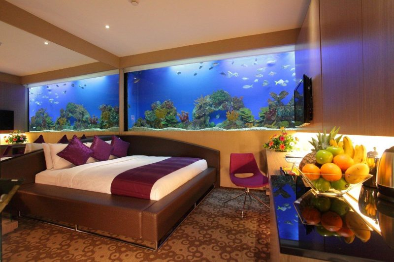 Оформление аквариума (4)
