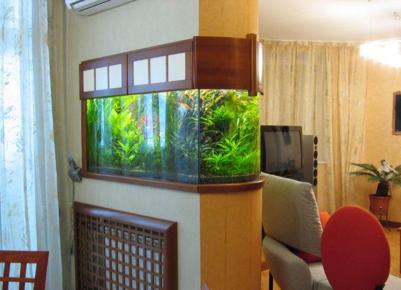 Оформление аквариума (5)