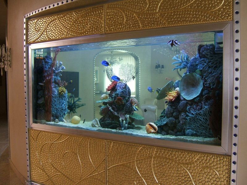 Оформление аквариума (9)