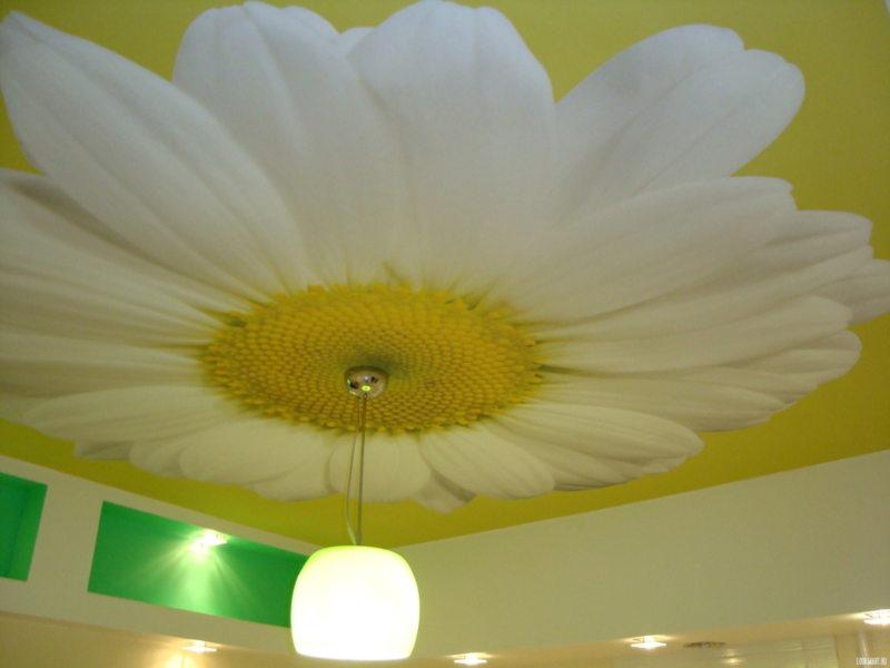 Потолок в прихожей (48)