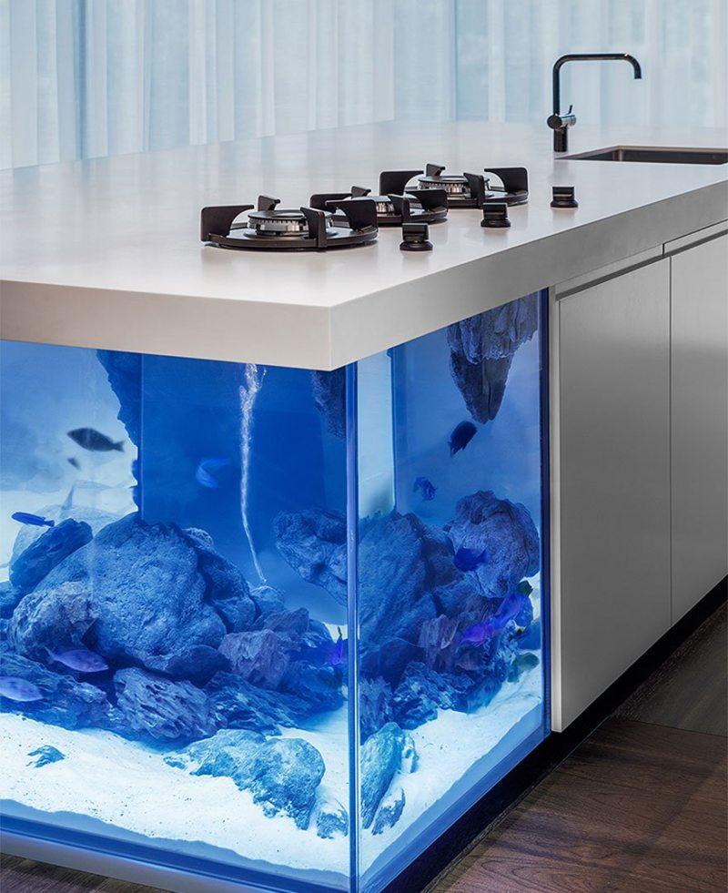 Самые необычные аквариумы (12)