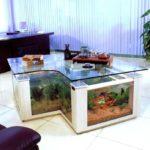 Самые необычные аквариумы (17)