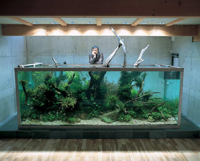Самые необычные аквариумы (21)