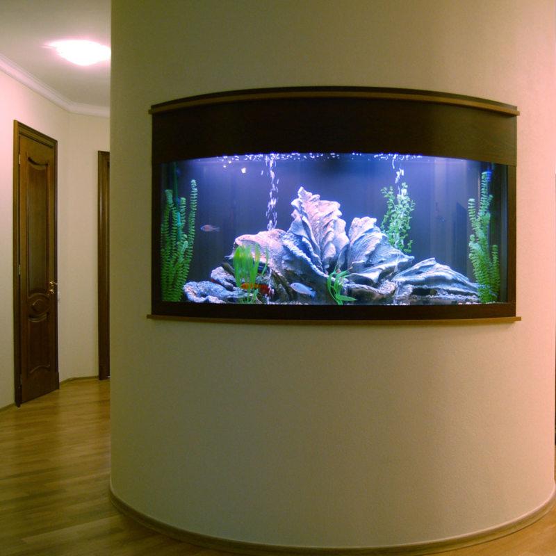 Самые необычные аквариумы (4)