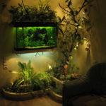 Самые необычные аквариумы (8)