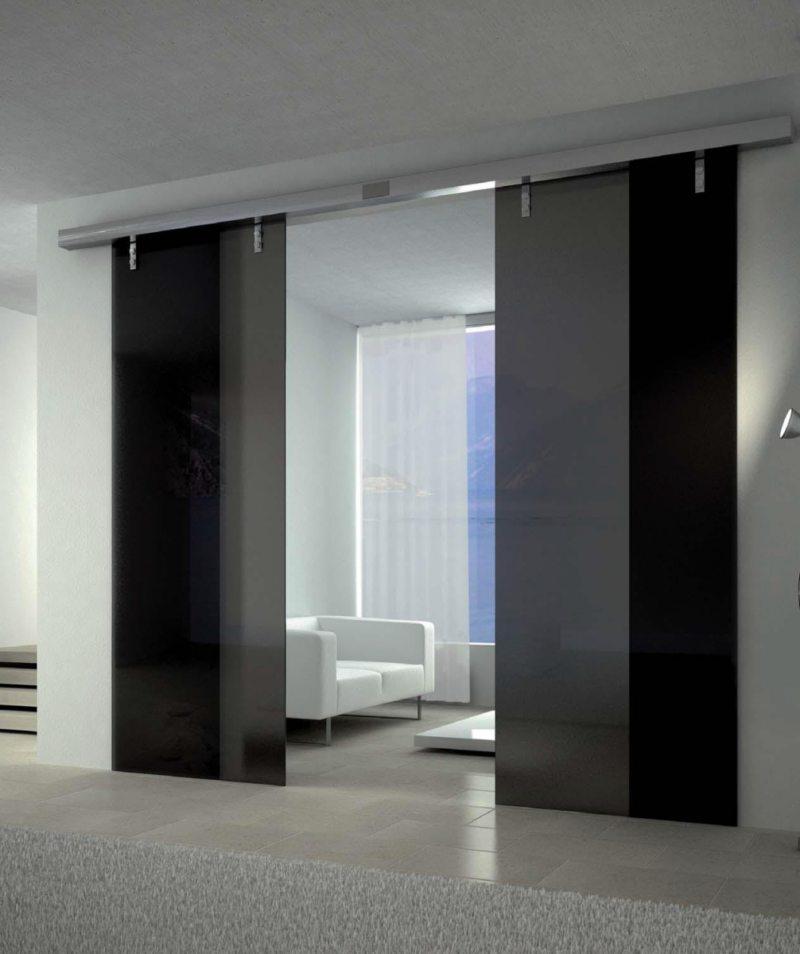 Стеклянные двери в интерьере (12)