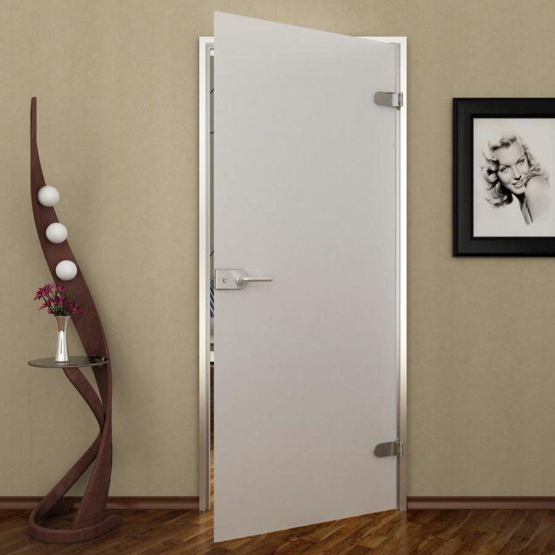 Стеклянные двери в интерьере (13)