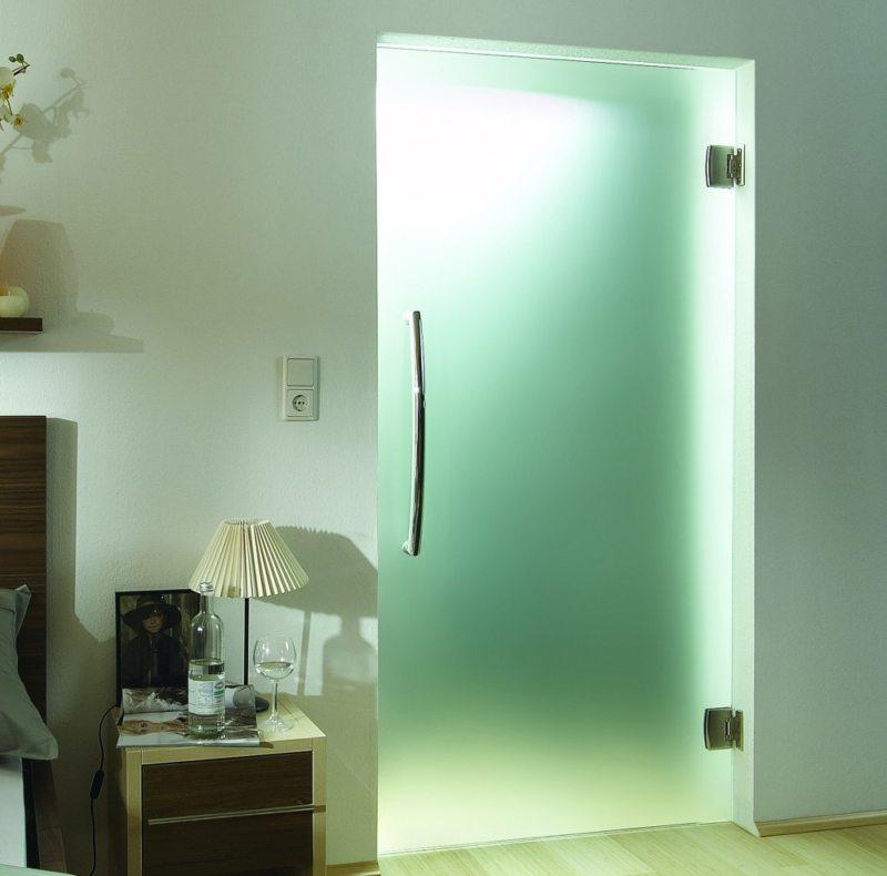 Стеклянные двери в интерьере (29)