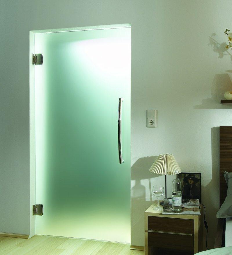 Стеклянные двери в интерьере (34)