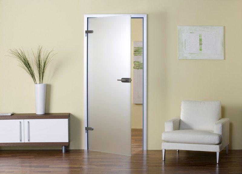 Стеклянные двери в интерьере (42)