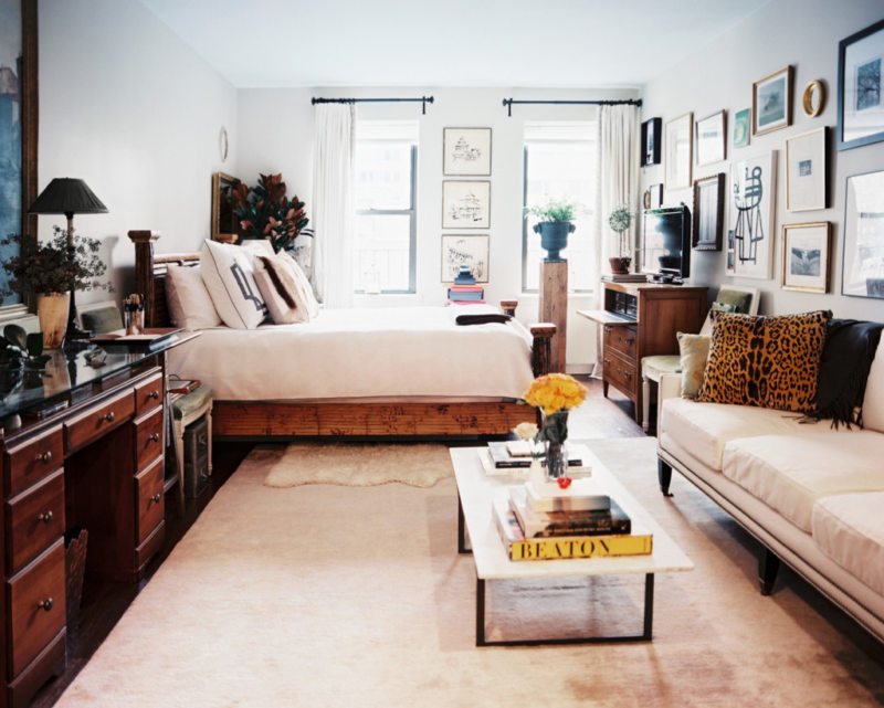 гостинная совмещенная со спальней (28)