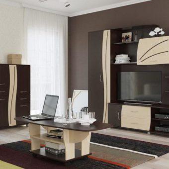 Мини стенки для гостиной — идеальное решение для современного интерьера (70 фото)